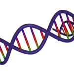 best dna testing for health reasons