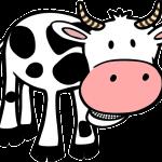 lactose intolerance symptoms